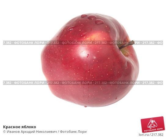 Красное яблоко, фото № 217382, снято 5 января 2008 г. (c) Иванов Аркадий Николаевич / Фотобанк Лори