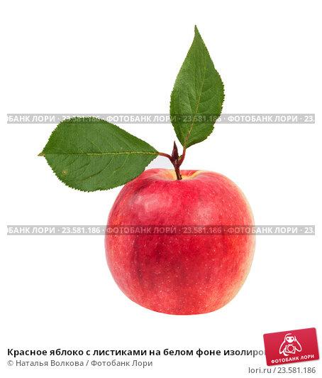 Красное яблоко с листиками на белом фоне изолировано, фото № 23581186, снято 24 сентября 2016 г. (c) Наталья Волкова / Фотобанк Лори