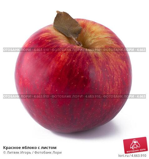 Купить «Красное яблоко с листом», фото № 4663910, снято 25 мая 2013 г. (c) Литвяк Игорь / Фотобанк Лори