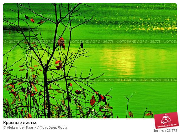 Купить «Красные листья», фото № 26778, снято 27 апреля 2018 г. (c) Aleksander Kaasik / Фотобанк Лори
