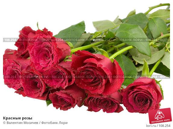 Красные розы, фото № 108254, снято 31 марта 2007 г. (c) Валентин Мосичев / Фотобанк Лори
