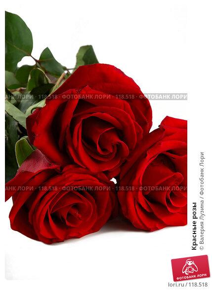 Купить «Красные розы», фото № 118518, снято 16 ноября 2007 г. (c) Валерия Потапова / Фотобанк Лори