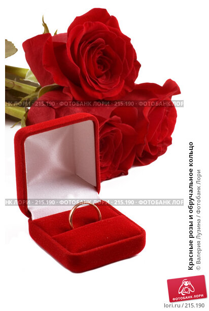 Красные розы и обручальное кольцо, фото № 215190, снято 1 марта 2008 г. (c) Валерия Потапова / Фотобанк Лори