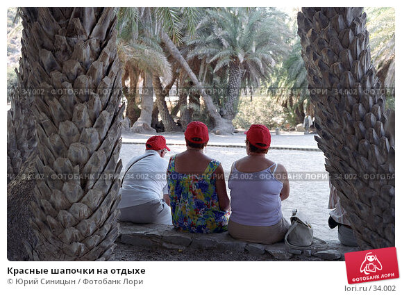 Красные шапочки на отдыхе, фото № 34002, снято 26 июля 2017 г. (c) Юрий Синицын / Фотобанк Лори
