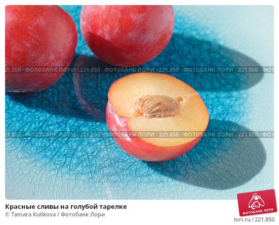 Красные сливы на голубой тарелке, фото № 221850, снято 11 марта 2008 г. (c) Tamara Kulikova / Фотобанк Лори