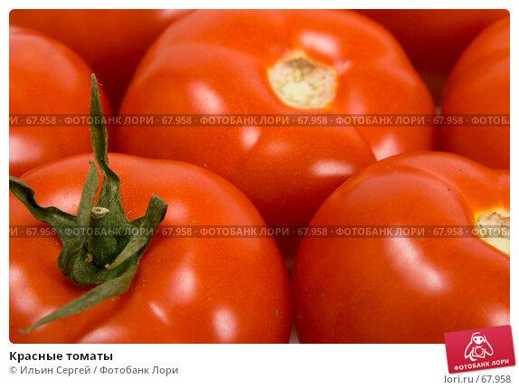 Красные томаты, фото № 67958, снято 6 мая 2007 г. (c) Ильин Сергей / Фотобанк Лори