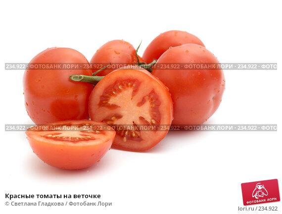 Купить «Красные томаты на веточке», фото № 234922, снято 23 декабря 2007 г. (c) Cветлана Гладкова / Фотобанк Лори