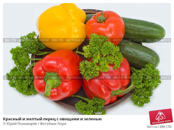 Купить «Красный и желтый перец с овощами и зеленью», фото № 289170, снято 6 мая 2008 г. (c) Юрий Пономарёв / Фотобанк Лори