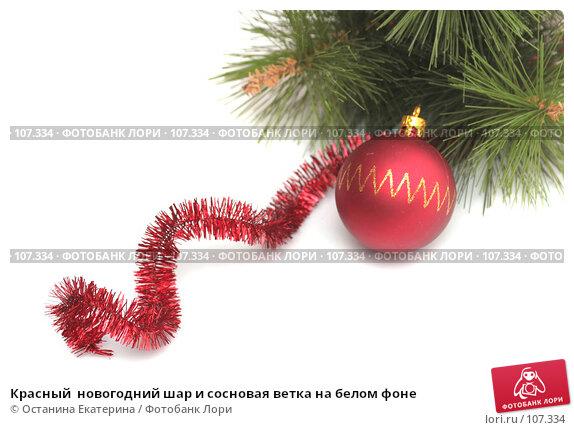 Красный  новогодний шар и сосновая ветка на белом фоне, фото № 107334, снято 31 октября 2007 г. (c) Останина Екатерина / Фотобанк Лори