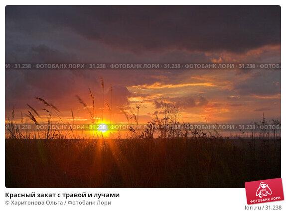Красный закат с травой и лучами, фото № 31238, снято 18 января 2017 г. (c) Харитонова Ольга / Фотобанк Лори