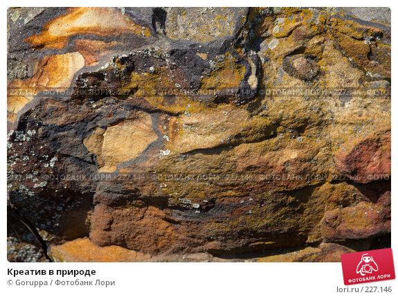 Креатив в природе, фото № 227146, снято 29 июля 2007 г. (c) Goruppa / Фотобанк Лори