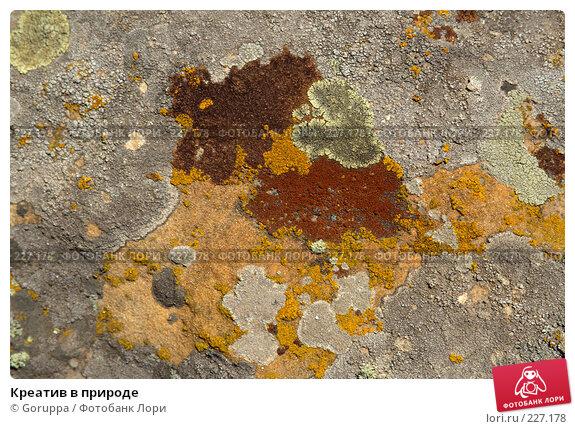 Креатив в природе, фото № 227178, снято 29 июля 2007 г. (c) Goruppa / Фотобанк Лори