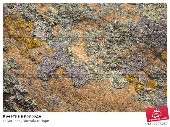 Креатив в природе, фото № 227282, снято 3 августа 2007 г. (c) Goruppa / Фотобанк Лори