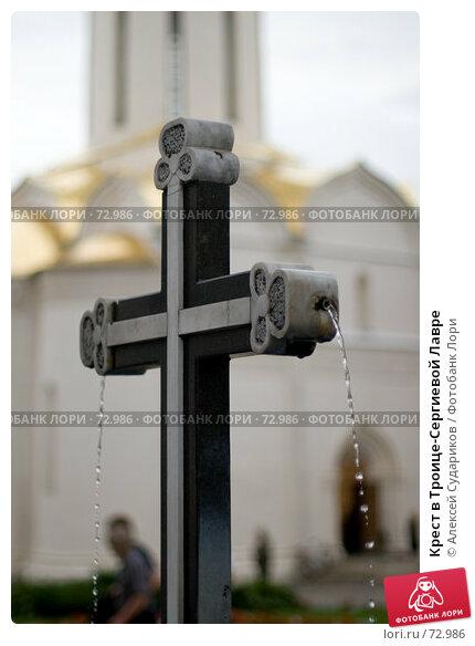 Купить «Крест в Троице-Сергиевой Лавре», фото № 72986, снято 19 августа 2007 г. (c) Алексей Судариков / Фотобанк Лори