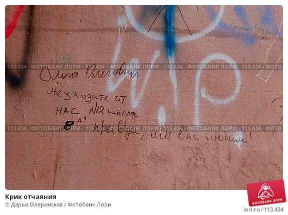 Крик отчаяния, фото № 113434, снято 8 мая 2007 г. (c) Дарья Олеринская / Фотобанк Лори