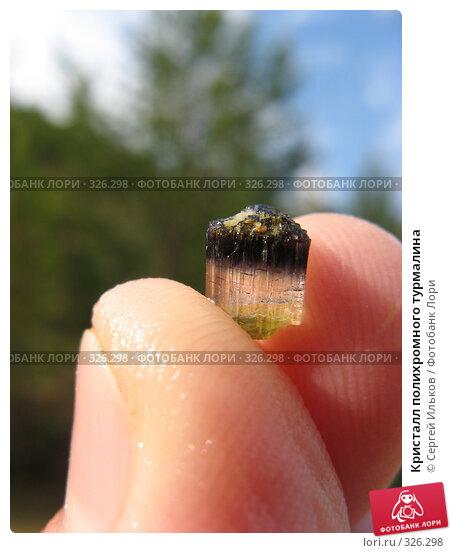 Кристалл полихромного турмалина, фото № 326298, снято 12 июня 2008 г. (c) Сергей Ильков / Фотобанк Лори