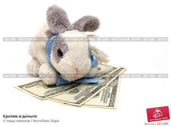 Кролик и деньги, фото № 267690, снято 26 марта 2008 г. (c) паша семенов / Фотобанк Лори
