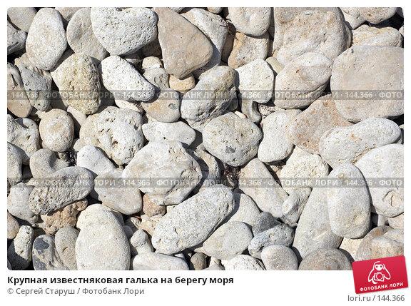 Крупная известняковая галька на берегу моря, фото № 144366, снято 20 июля 2007 г. (c) Сергей Старуш / Фотобанк Лори