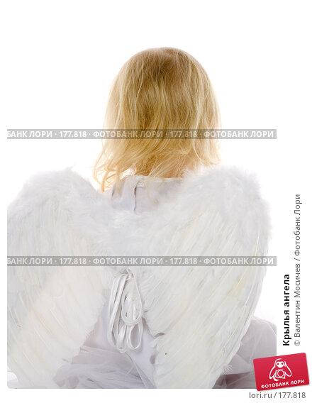 Крылья ангела, фото № 177818, снято 12 января 2008 г. (c) Валентин Мосичев / Фотобанк Лори