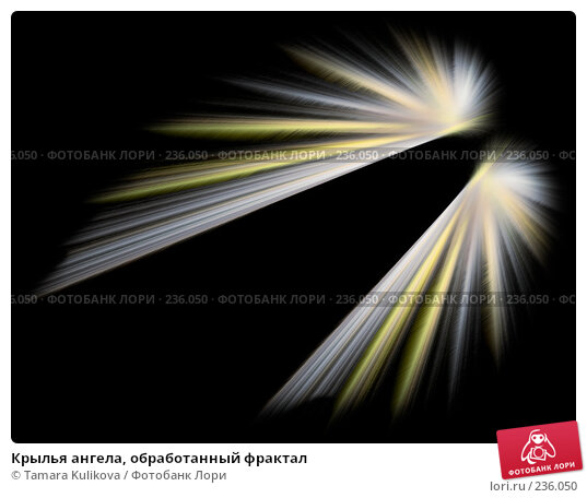 Купить «Крылья ангела, обработанный фрактал», иллюстрация № 236050 (c) Tamara Kulikova / Фотобанк Лори