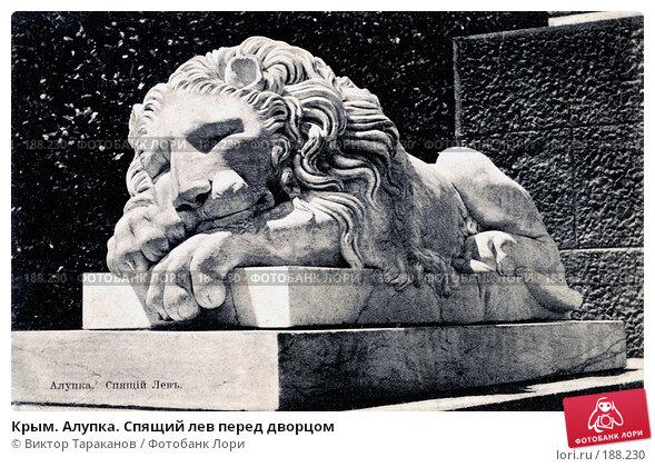 Купить «Крым. Алупка. Спящий лев перед дворцом», фото № 188230, снято 18 декабря 2017 г. (c) Виктор Тараканов / Фотобанк Лори