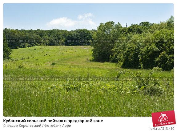 Купить «Кубанский сельский пейзаж в предгорной зоне», фото № 313410, снято 4 июня 2008 г. (c) Федор Королевский / Фотобанк Лори