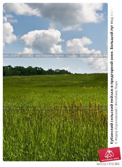 Кубанский сельский пейзаж в предгорной зоне. Большой луг под голубым небом с облаками., фото № 313382, снято 4 июня 2008 г. (c) Федор Королевский / Фотобанк Лори