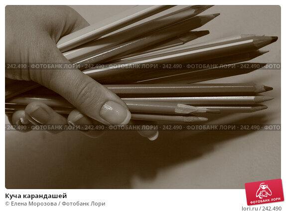 Куча карандашей, фото № 242490, снято 4 апреля 2008 г. (c) Елена Морозова / Фотобанк Лори