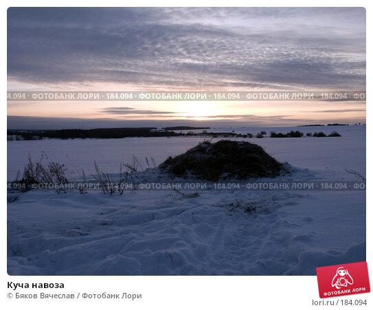 Куча навоза, фото № 184094, снято 3 января 2008 г. (c) Бяков Вячеслав / Фотобанк Лори