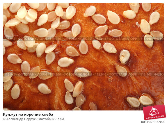 Кунжут на корочке хлеба, фото № 115946, снято 14 сентября 2007 г. (c) Александр Паррус / Фотобанк Лори