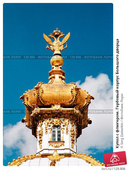 Купол с флюгером. Гербовый корпус Большого дворца, фото № 129806, снято 24 января 2017 г. (c) Serg Zastavkin / Фотобанк Лори