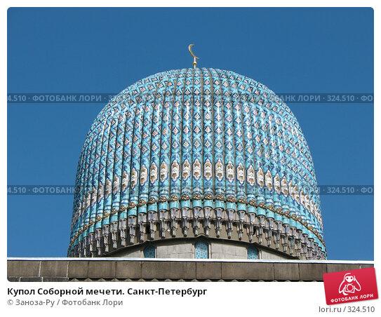 Купол Соборной мечети. Санкт-Петербург, фото № 324510, снято 12 июня 2008 г. (c) Заноза-Ру / Фотобанк Лори