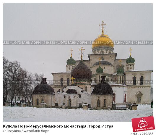 Купола Ново-Иерусалимского монастыря. Город Истра, фото № 210338, снято 24 февраля 2008 г. (c) Liseykina / Фотобанк Лори