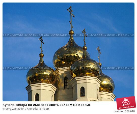 Купола собора во имя всех святых (Храм на Крови), фото № 129610, снято 7 июня 2005 г. (c) Serg Zastavkin / Фотобанк Лори
