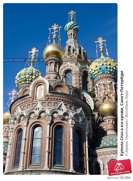 Купить «Купола Спаса-на-крови, Санкт-Петербург», эксклюзивное фото № 36994, снято 9 апреля 2006 г. (c) Ирина Терентьева / Фотобанк Лори