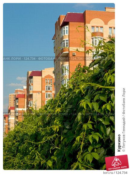 Куркино, фото № 124734, снято 24 июля 2007 г. (c) Петухов Геннадий / Фотобанк Лори