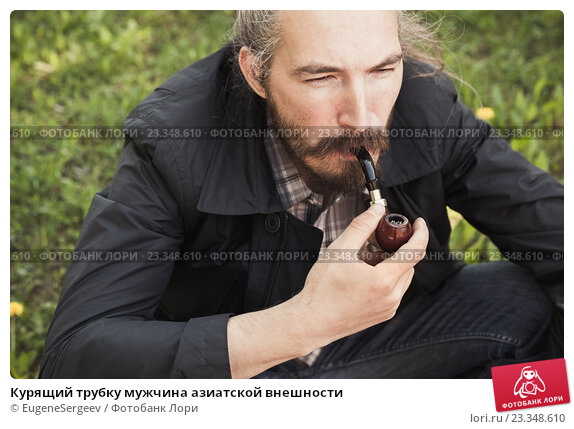 Фото медведь ест траву нос