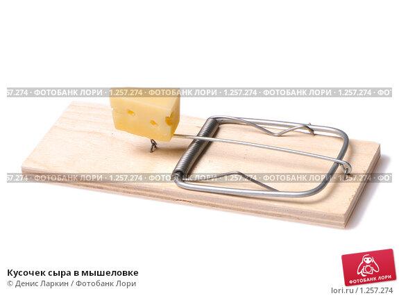 Кусочек сыра в мышеловке, фото № 1257274, снято 4 октября 2009 г. (c) Денис Ларкин / Фотобанк Лори