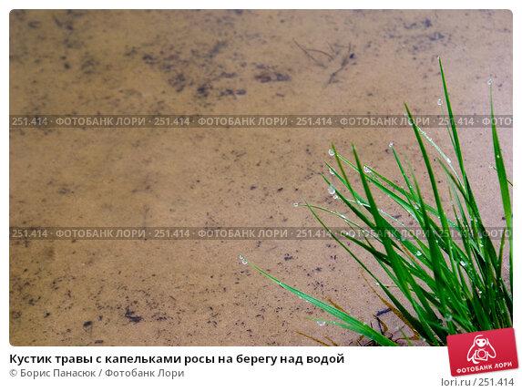Кустик травы с капельками росы на берегу над водой, фото № 251414, снято 11 апреля 2008 г. (c) Борис Панасюк / Фотобанк Лори