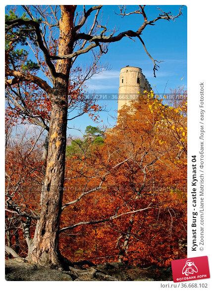 Kynast Burg - castle Kynast 04. Стоковое фото, фотограф Zoonar.com/Liane Matrisch / easy Fotostock / Фотобанк Лори