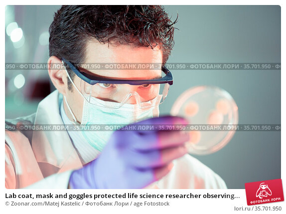 Lab coat, mask and goggles protected life science researcher observing... Стоковое фото, фотограф Zoonar.com/Matej Kastelic / age Fotostock / Фотобанк Лори