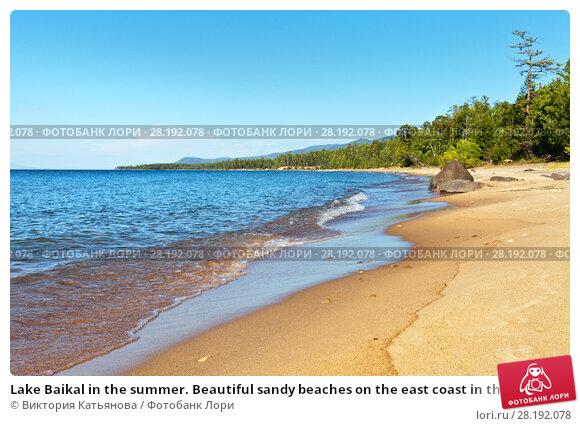 Купить «Lake Baikal in the summer. Beautiful sandy beaches on the east coast in the sunny afternoon», фото № 28192078, снято 27 августа 2016 г. (c) Виктория Катьянова / Фотобанк Лори
