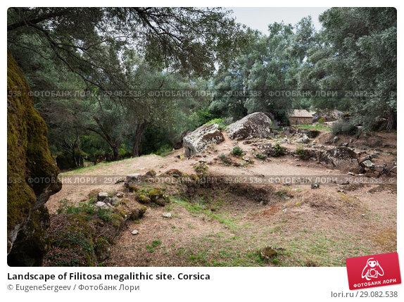 Купить «Landscape of Filitosa megalithic site. Corsica», фото № 29082538, снято 20 августа 2018 г. (c) EugeneSergeev / Фотобанк Лори