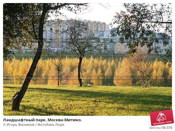 Ландшафтный парк. Москва-Митино., фото № 96570, снято 11 октября 2007 г. (c) Игорь Веснинов / Фотобанк Лори