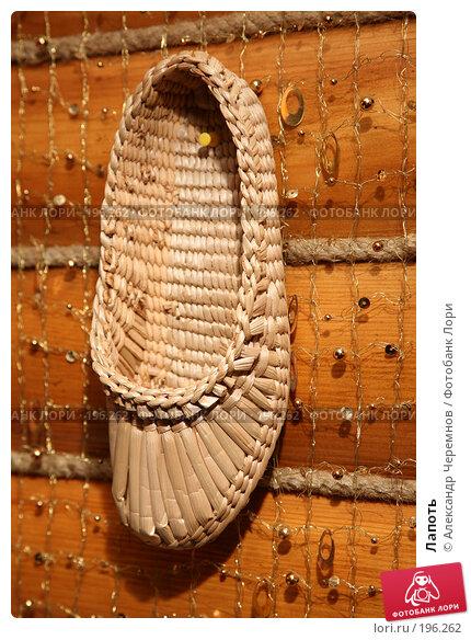 Лапоть, фото № 196262, снято 31 октября 2007 г. (c) Александр Черемнов / Фотобанк Лори