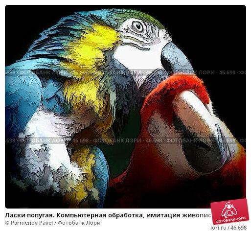 Купить «Ласки попугая. Компьютерная обработка, имитация живописи», иллюстрация № 46698 (c) Parmenov Pavel / Фотобанк Лори
