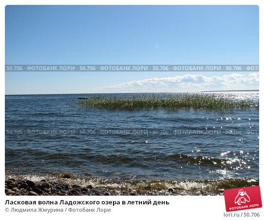Купить «Ласковая волна Ладожского озера в летний день», фото № 50706, снято 19 августа 2005 г. (c) Людмила Жмурина / Фотобанк Лори