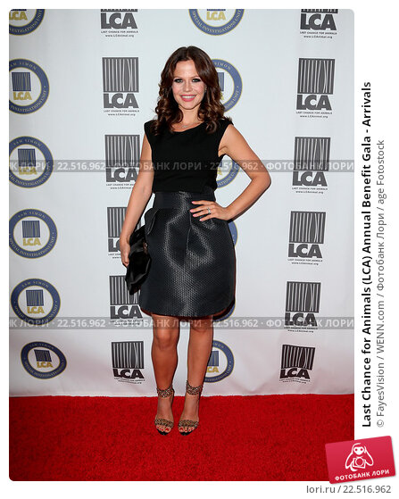 Купить «Last Chance for Animals (LCA) Annual Benefit Gala - Arrivals Featuring: Tammin Sursok Where: Beverly Hills, California, United States When: 24 Oct 2015 Credit: FayesVision/WENN.com», фото № 22516962, снято 24 октября 2015 г. (c) age Fotostock / Фотобанк Лори