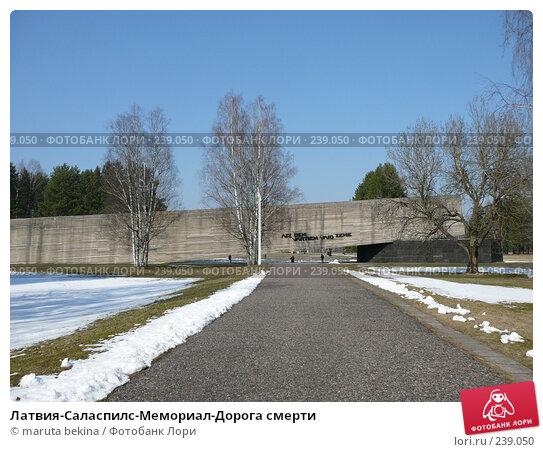 Латвия-Саласпилс-Мемориал-Дорога смерти, фото № 239050, снято 29 марта 2008 г. (c) maruta bekina / Фотобанк Лори