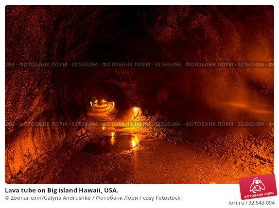Купить «Lava tube on Big island Hawaii, USA.», фото № 32543094, снято 16 декабря 2019 г. (c) easy Fotostock / Фотобанк Лори